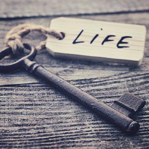 Équilibre de vie